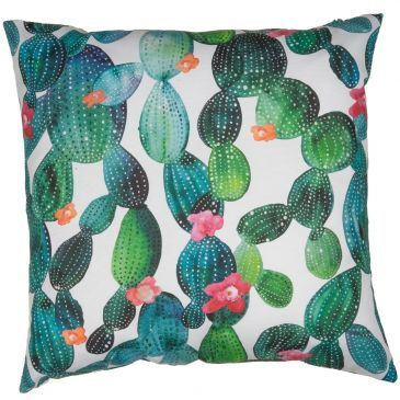 Tropical Cactus